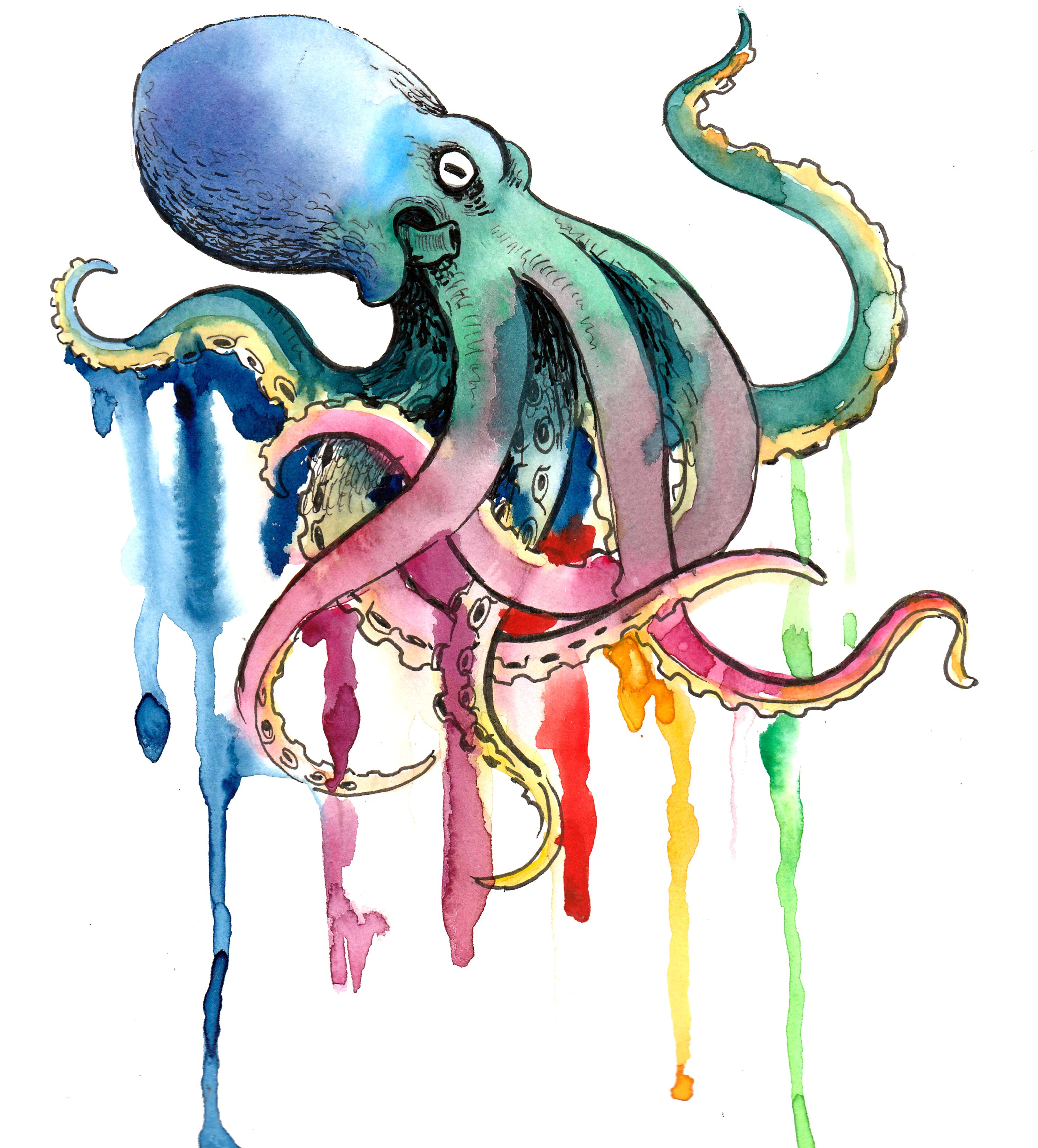 The Analytical Octopus
